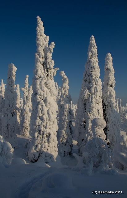Filming ** Light / My Photos: Tykkyä Riisitunturi