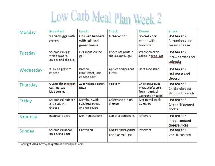 no carb diet plan pdf