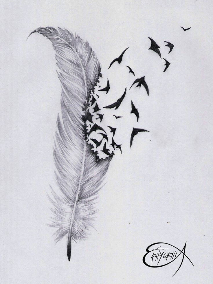 Amazing feather & birds tattoo design