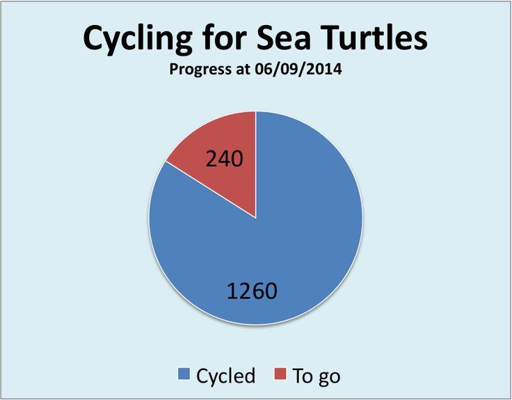 Red Sea Turtle Project - UK: MARCO GIOVANNINI - PADI CD 619790 - UK: 1260 Km - ...