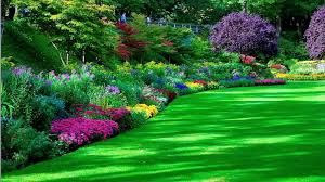 Image result for free garden pictures backgrounds