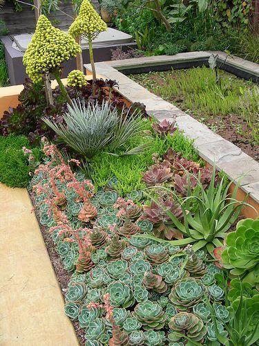 Trejo Garden in Albany, Rear Garden at Pond | Flickr – Compartilhamento de fotos!