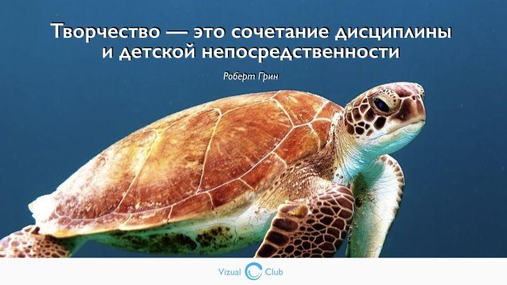 Цитаты о творчестве #цитатаодизайне #дизайн #черепаха #творчество #непосредственность #робертгрин #визуальнаяграмотность #vizualclub #visualclub