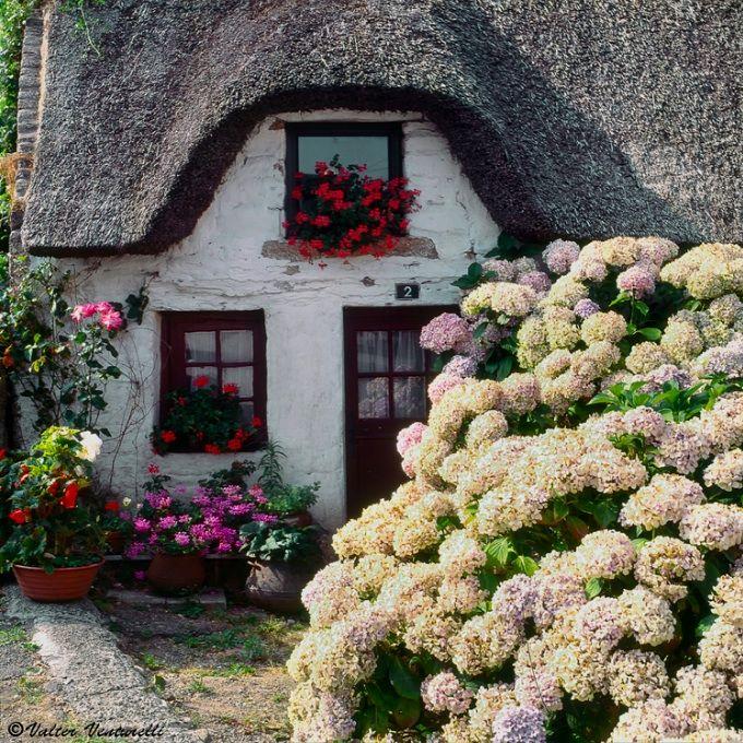 cottage house in Bretagne, France      | ♕ | Une Belle Maison en Bretagne | by © Valter Venturelli    via ysvoice: intogreen