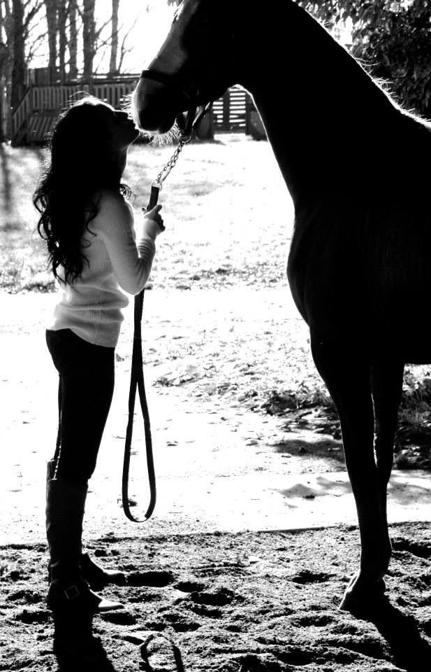 Equine Photography. #patsyloebphotography
