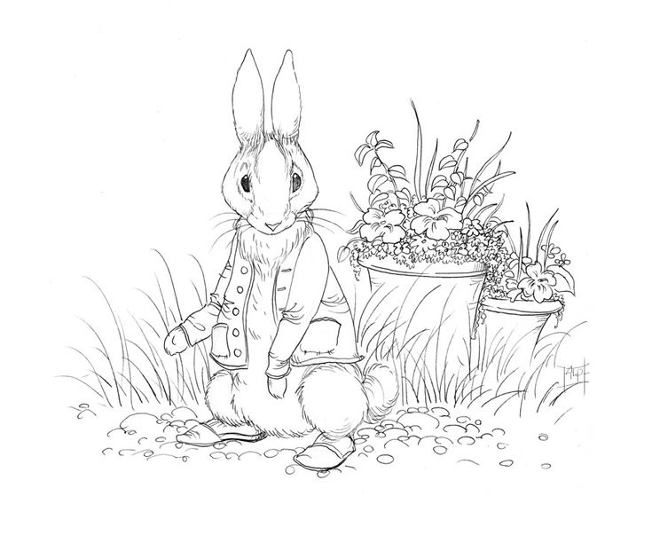 peter rabbit cartoon coloring pages - photo#32