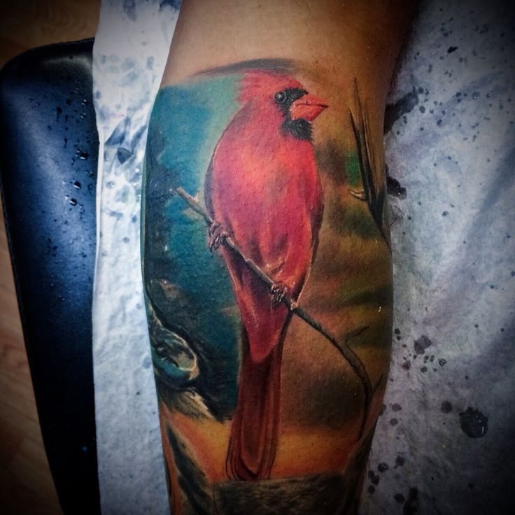 Red Cardinal tattoo  i did