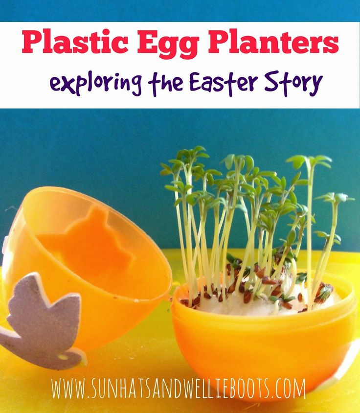 Sun Hats & Wellie Boots: Plastic Egg Planters - Great for Growing & Exploring the Easter Story