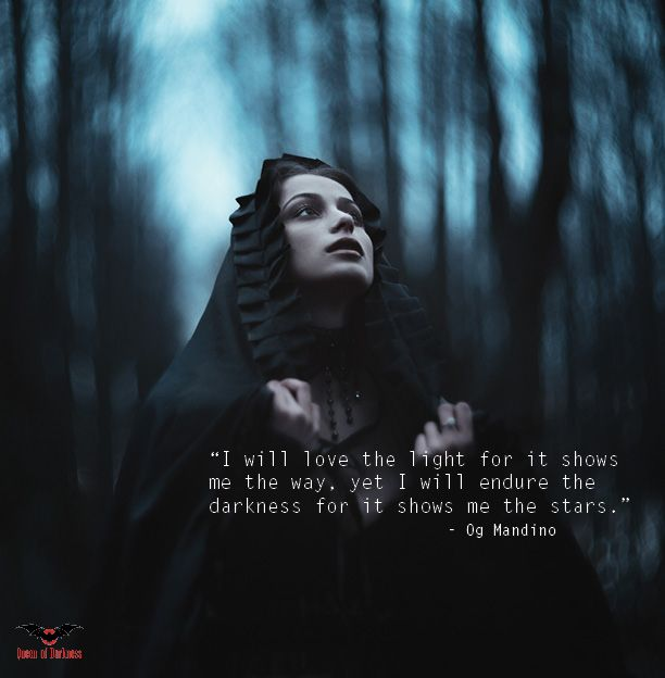 119 best gothic quotes images on pinterest gothic quotes i will always love the light for it shows me the way yet i will endure the darkness for it shows me the stars fandeluxe Document