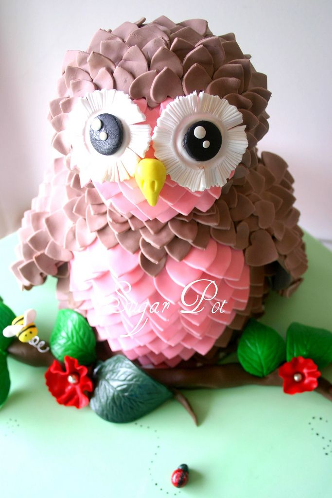 Wow! Now that's a cake. Pink and Brown Owl Cake