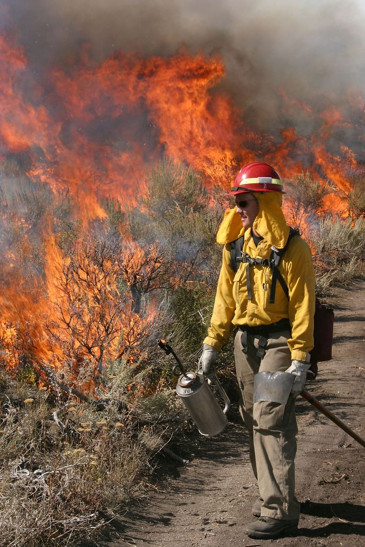 24 Best Firefighters In Action Images On Pinterest