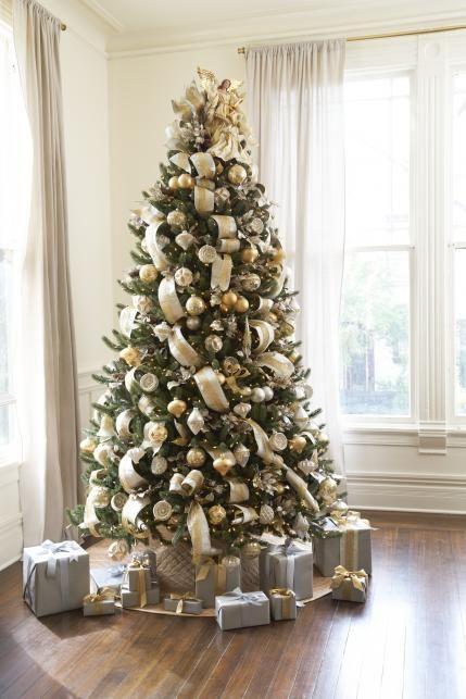 Vermont White Spruce Tree