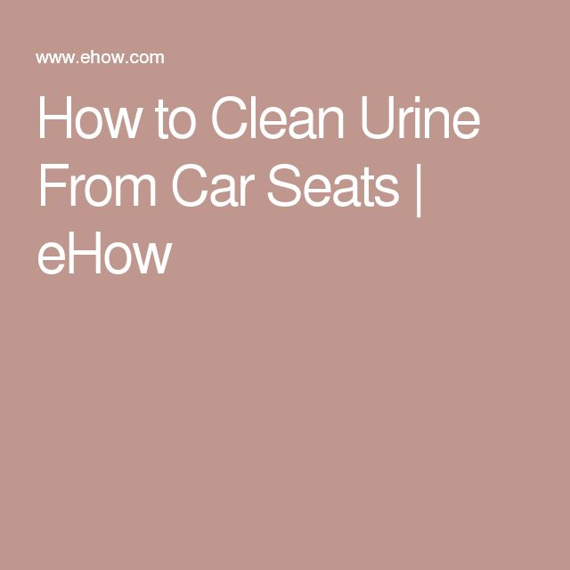 How to Clean Urine From Car Seats   eHow