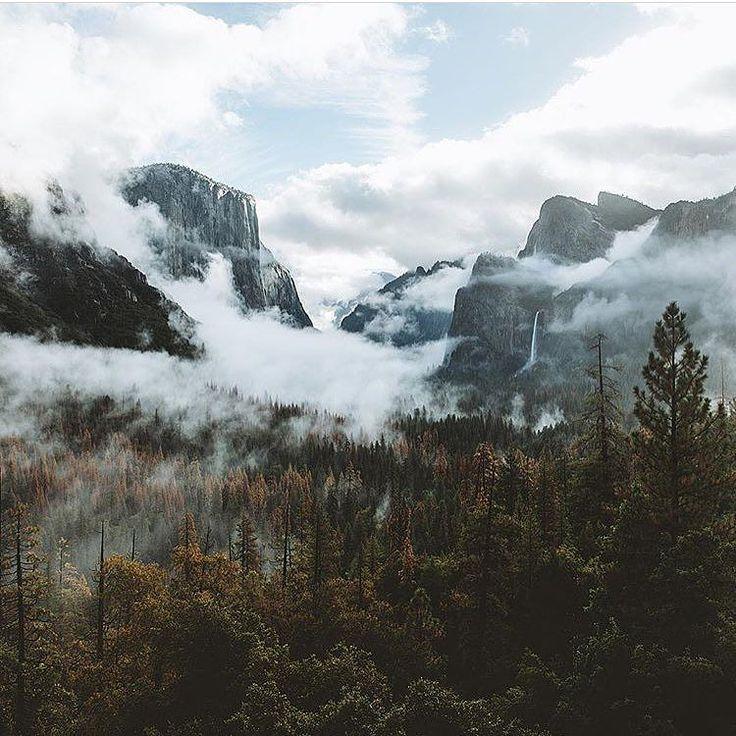 Photo by @kylekotajarvi. Yosemite.