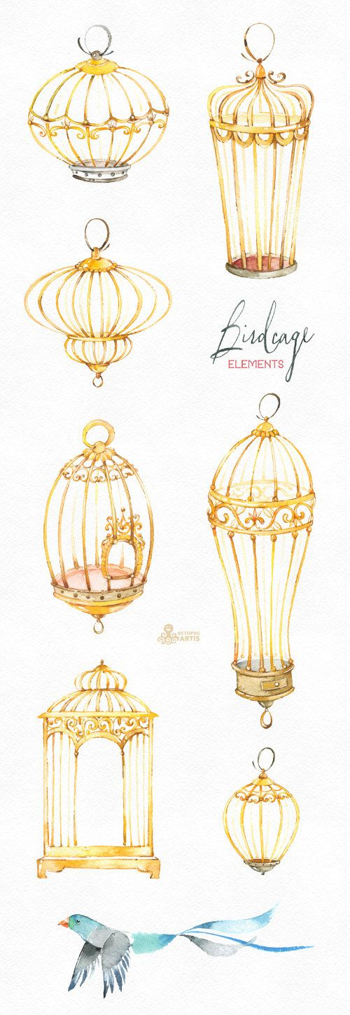 Birdcage Elements. Watercolor clipart with birds by OctopusArtis