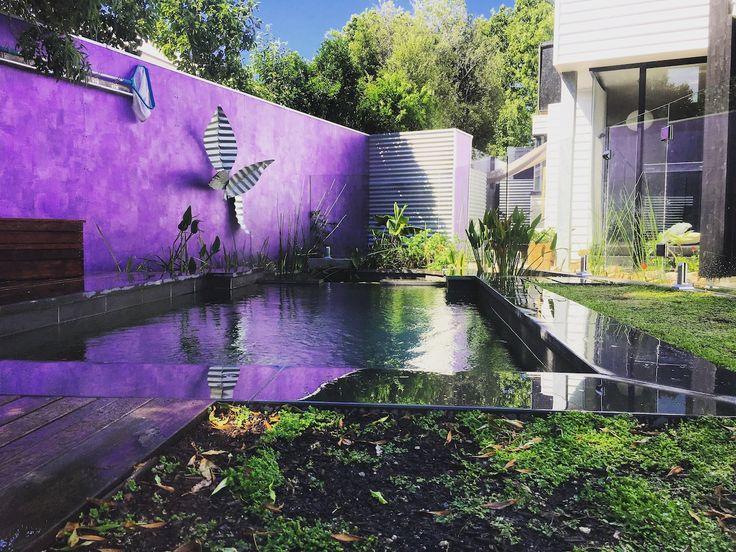 Cool natural pool swimming pool eco pool eco pool melbourne pool GartenNaturschwimmb derHinterhof MakeoverLandschaftsbau