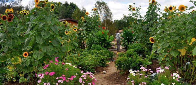 Abbey Gardens — A Growing Experience in Haliburton County