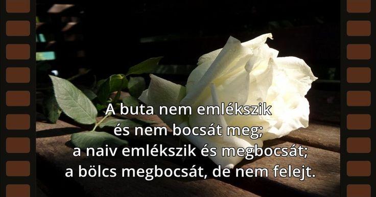 A buta nem emlékszik és nem bocsát meg; a naiv emlékszik és megbocsát; a bölcs megbocsát, de nem felejt.