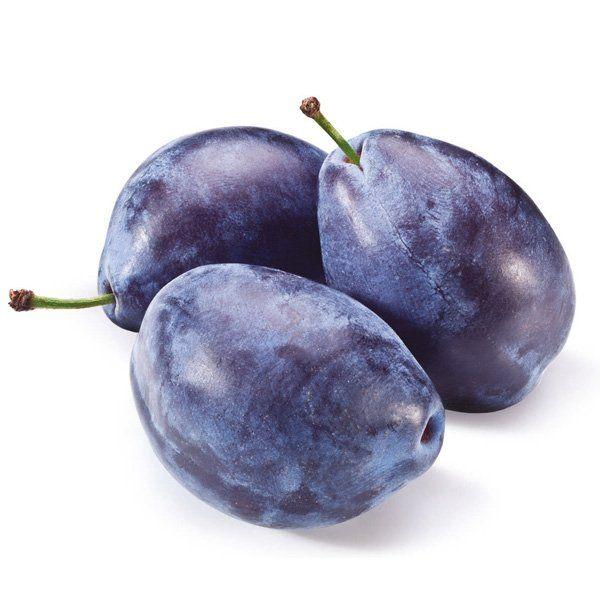 Śliwa - Prunus domestica 'Węgierka Wczesna'