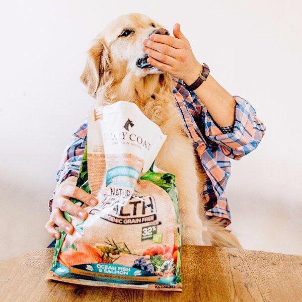 Cheapest Grainfree Dog Food Australia