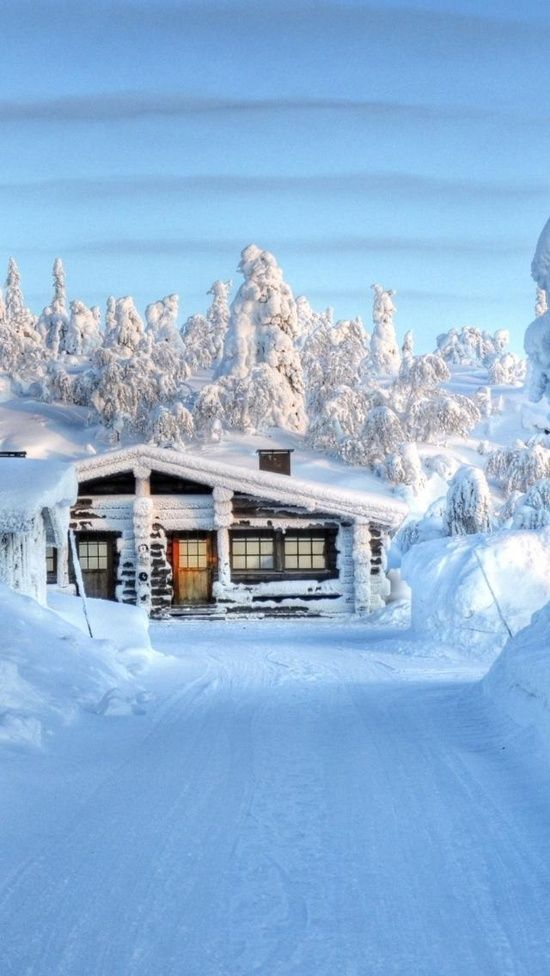 Stillness & Beauty of Snow ♥♥. I'd love to stay and sled here!