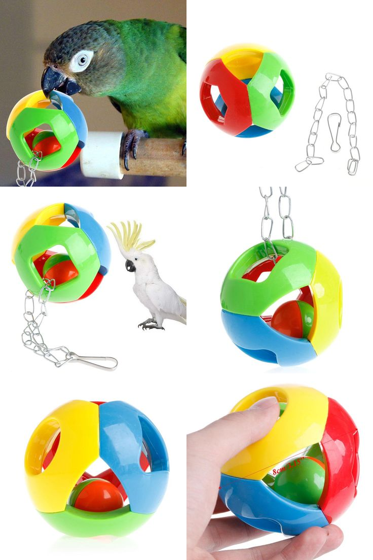 [Visit to Buy] New Pet Bird Bites Toys Parrot Chew Ball Swing Cage Hanging Play Cockatiel Parakeet On Sale #Advertisement