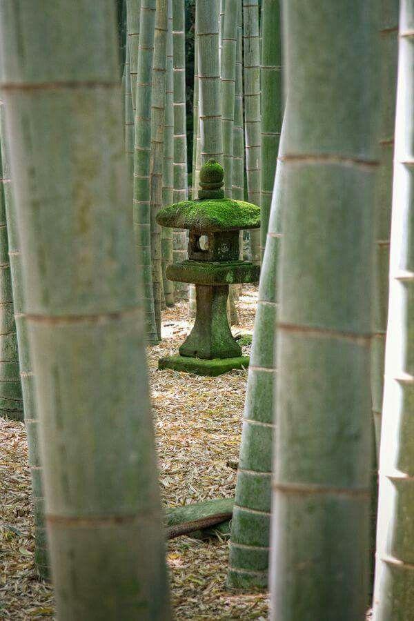 Moss Covered Stone Lantern