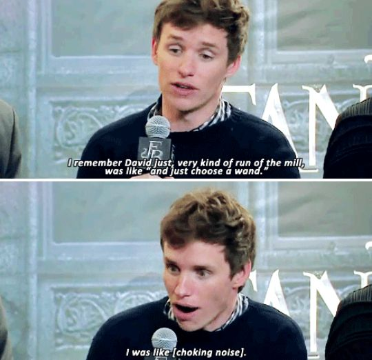When it was time for him to choose his Fantastic Beasts wand, and he completely geeked out. | 23 Times Eddie Redmayne Was A Gift We Didn't Deserve