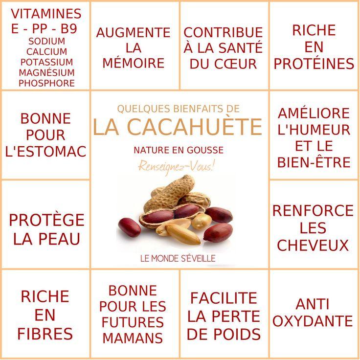 Les Bienfaits de la Cacahuète Nature | CACAHUÈTE Le Monde s'Eveille Grâce à Nous Tous ♥