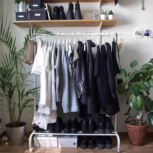 Plants Black Tumblr Room Aesthetic Google Search Room
