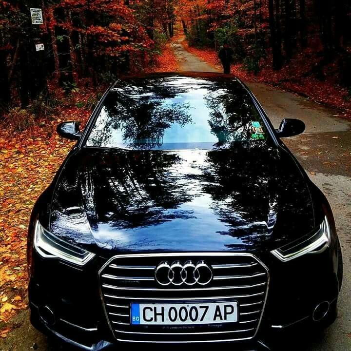 Best Audi Images On Pinterest Audi Cars Dream Cars And - Audi automobile