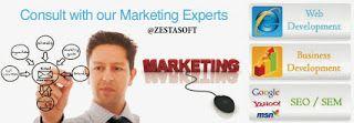 Website design company in Delhi | zestasoft technologies: Website design company in Delhi | zestasoft techno...