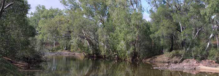 Emu Creek Camping