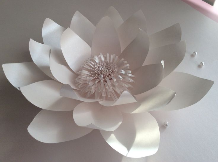 Бумажные цветы, фотозона из бумажных цветов,