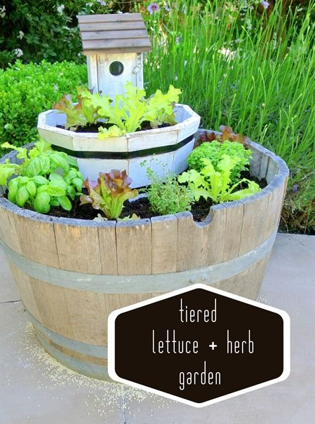 tiered lettuce garden, plus all sorts of other garden ideas on there