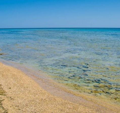 Tempo non solo di sognare ma di programmare, per esempio una vacanza in Mar Rosso: 7 notti all inclusive da 415€! Scegliete tra Sharm, Hurghada, Marsa Alam.. http://www.it.lastminute.com/site/viaggi/vacanze/homepage.html?intcmp=lmn_hp_main_flash2