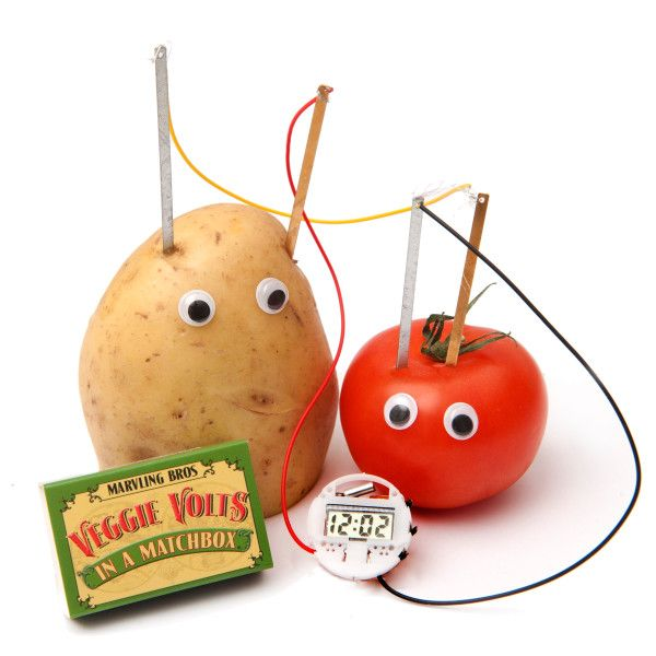 A shockingly good fun electricity kit showcasing the power of vegetables! Forget your five a day. Just two vegetables are all you need to power up this miniature