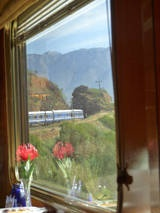The Blue Train through South Africa :)