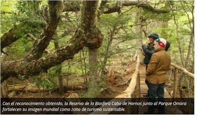 Yamana Earth: Eligen a la Reserva Mundial de la Biósfera Cabo de...