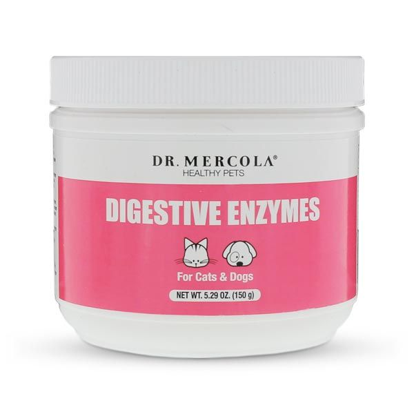 Pet Digestive Enzymes help promote canine and feline health by supporting pet digestion and nutrient absorption. http://products.mercola.com/healthypets/digestive-enzymes-for-pet/