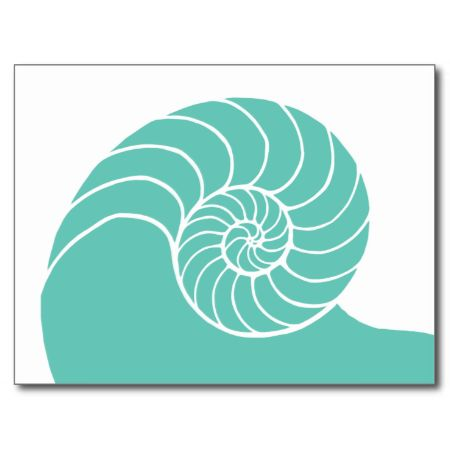 Teal Nautilus Sea Shell Post Cards
