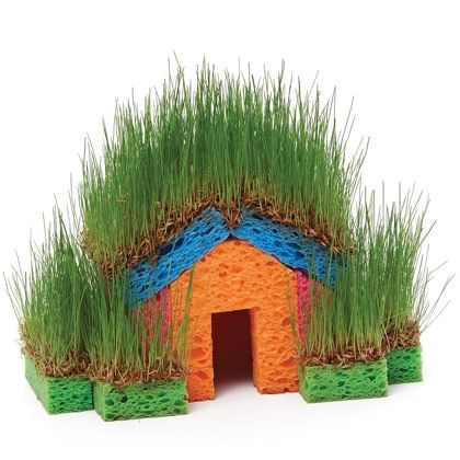 Little Grass House - made from grass seeds and kitchen sponges!