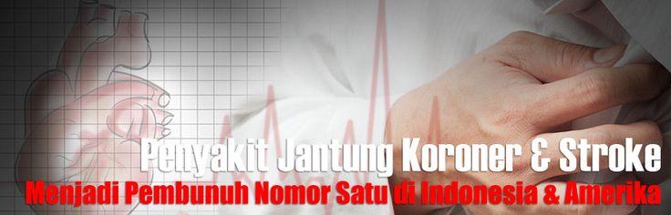 Penyakit Jantung Koroner - Obat Jantung dan Sakit Stroke