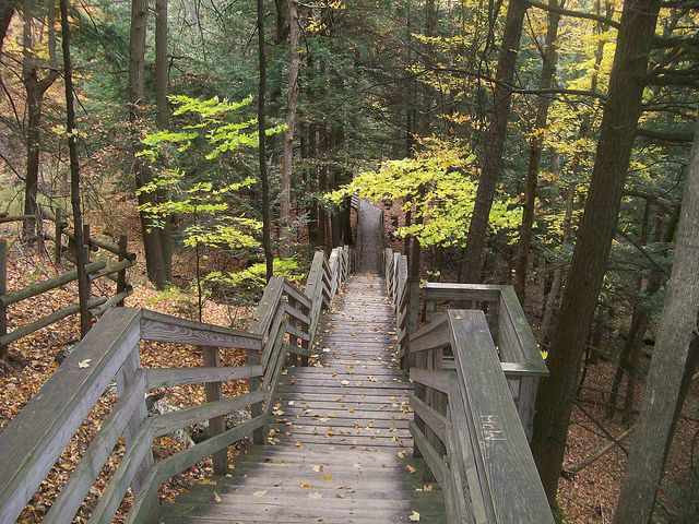 Stairs at Largo Springs, west of Oscoda, Michigan. (What a wicked climb back up.)