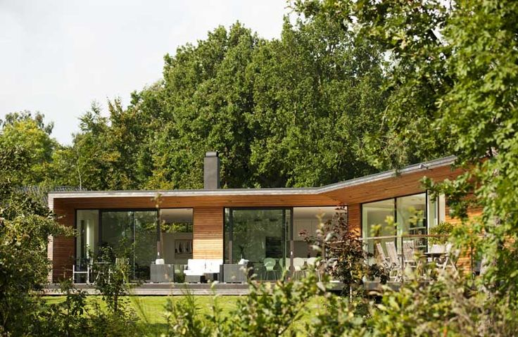 Modern contemporary villa designs surrounded trees