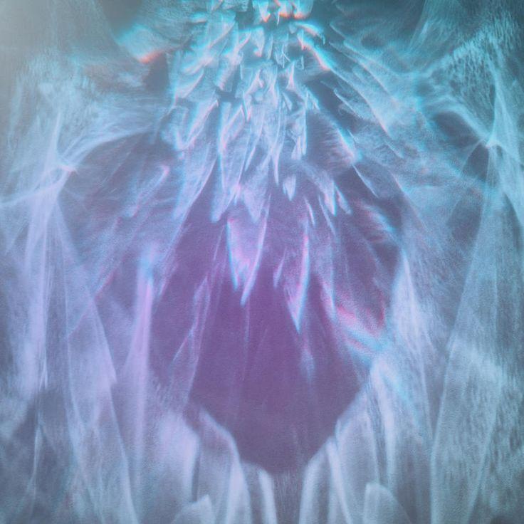 Jane Star Photograph - Enchanted Heart by Jane Star  #JaneStar #Abstract #GlassGlare #ArtForHome #InteriorDesign #HomeDecor