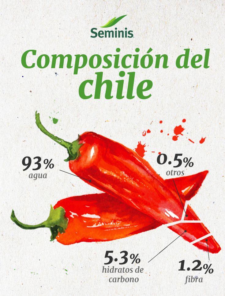 ¿Sabía que el 93% de la composición química del chile es agua?