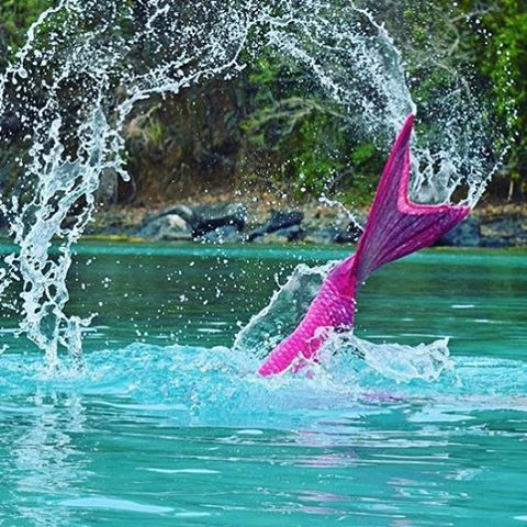 Did you know that you can be a real mermaid with Fin Fun Mermaid's real swim-able mermaid tails! Let Fin Fun make your dream come true regardless of your age! Tails are available in kid and adult sizes! Become a mermaid with FinFunMermaid.com