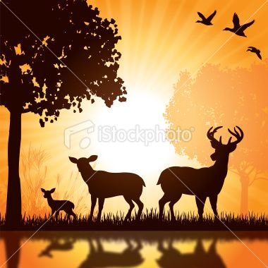 Deer Family - Buck, Doe, Fawn Silhouette Background stock vector ...
