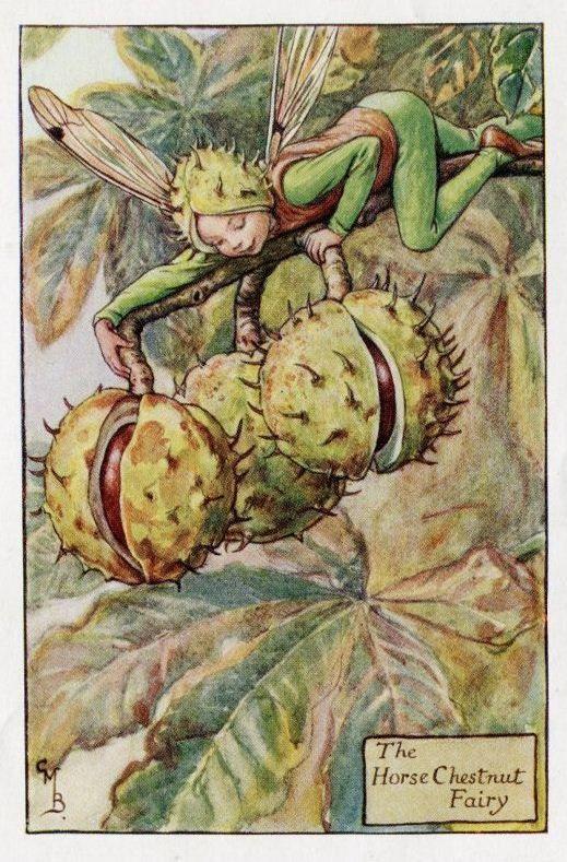 Horse Chestnut Flower Fairy Vintage Print, c.1927 Cicely Mary Barker Book Plate Illustration